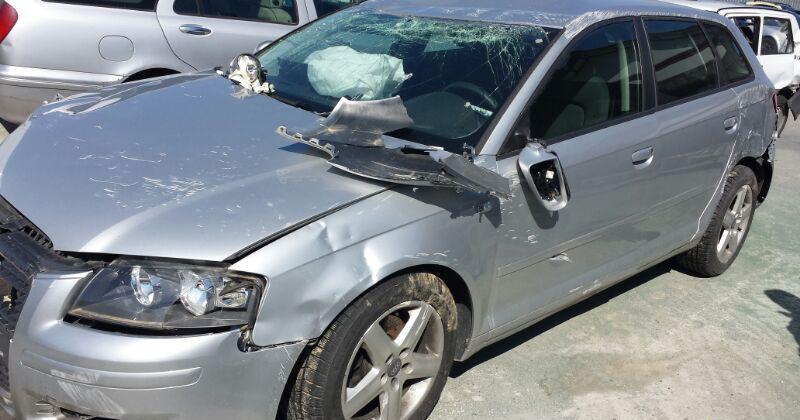 Audi A3 1.9.2.0DНА ЧАСТИ