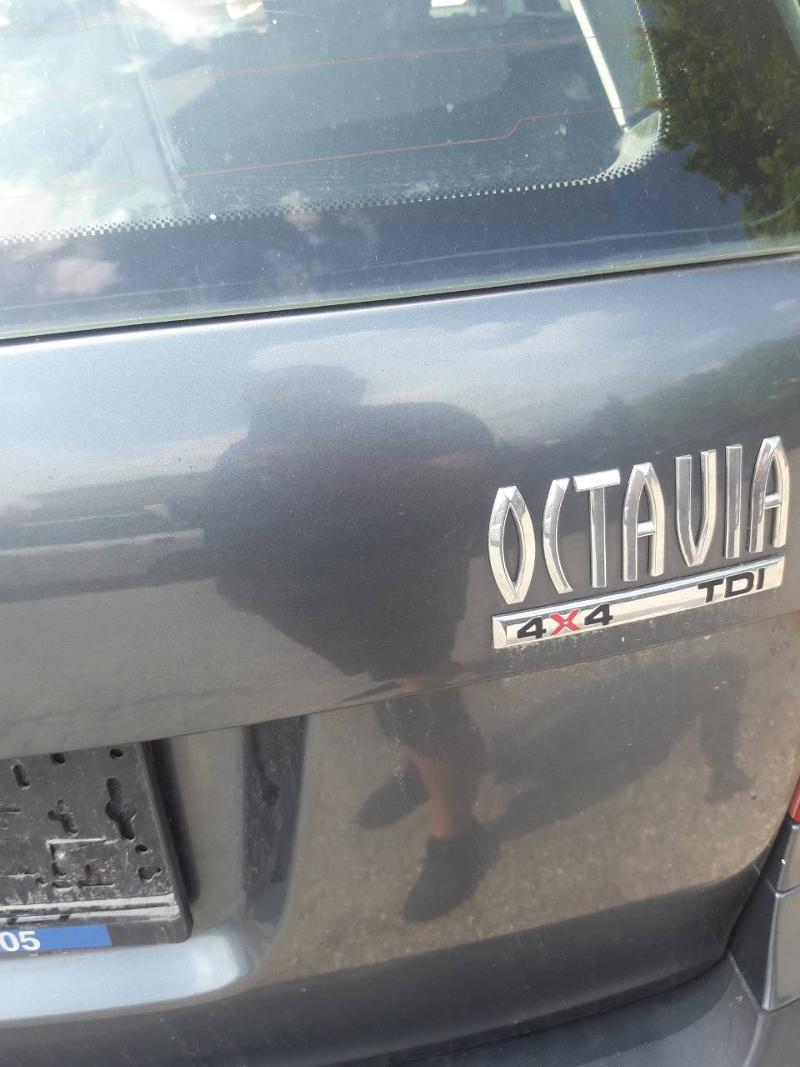Skoda Octavia 1.9TDI 4x4, снимка 1